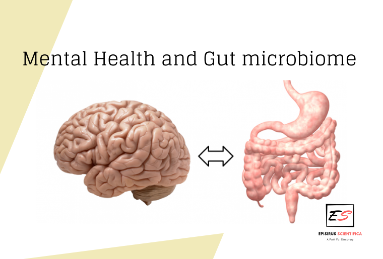 mental-health-and-gut-microbiome